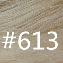 #613 Light blonde